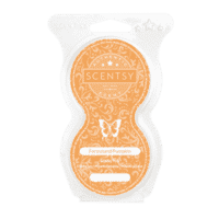 FARMSTAND PUMPKIN SCENTSY PODS