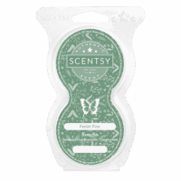 FEELIN PINE SCENTSY GO PODS | FEELIN' PINE SCENTSY PODS | HOLIDAY 2020