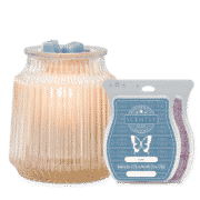 FLUTED GRAY SCENTSY WARMER BUNDLE