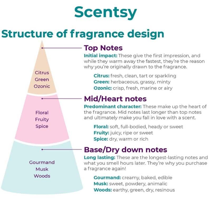 SCENTSY FRAGRANCE STRUCTURE DESIGN