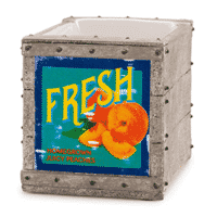 FRUIT CRATE SCENTSY WARMER - DISCONTINUED