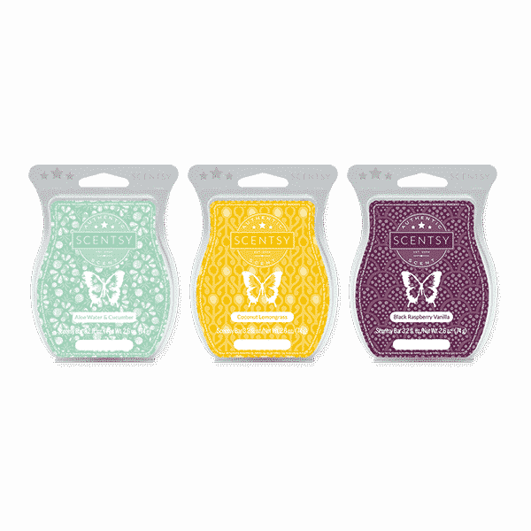 FragranceSystemsWarmersAndWaxWaxBarsR1 (3)   What is a Scentsy Warmer?   Scentsy® Online Store   Scentsy Warmers & Scents   Incandescent.Scentsy.us