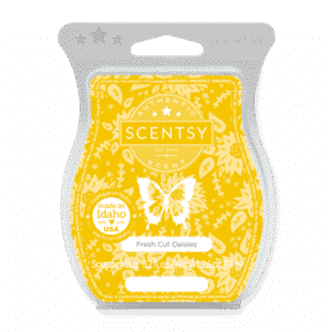 Fresh Cut Daisies Scentsy bar 1
