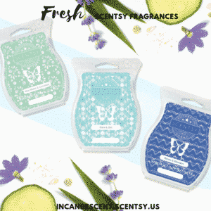 Fresh Scentsy Fragrances | SCENTSY COMPLETE SCENT LIST FOR SPRING SUMMER 2019 | SCENTSY LIST OF FRAGRANCES | Scentsy® Online Store | Scentsy Warmers & Scents | Incandescent.Scentsy.us