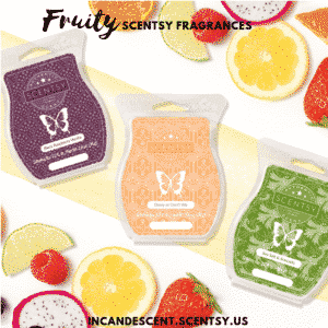 Fruity Scentsy Fragrances | SCENTSY COMPLETE SCENT LIST FOR SPRING SUMMER 2019 | SCENTSY LIST OF FRAGRANCES | Scentsy® Online Store | Scentsy Warmers & Scents | Incandescent.Scentsy.us