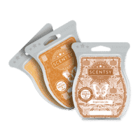 GOURDGEOUS PUMPKIN SCENTSY WAX COLLECTION