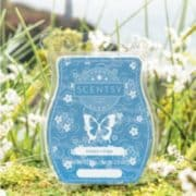 HARBORS EDGE SCENTSY FRAGRANCE