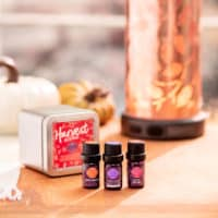 GIFT PACK OF 3 DIFFERENT SCENTSY HARVEST OILS