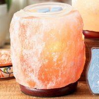 HIMALAYAN SALT SCENTSY WARMER PINK