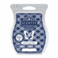 HOMESTEAD HOLIDAY SCENTSY BAR