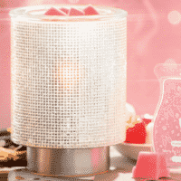 JANUARY 2019 WARMER OF THE MONTH ILLUMINATE