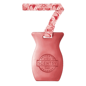 JOHNNY APPLESEED SCENTSY CAR BAR