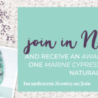 JOIN SCENTSY NOVEMBER 2018 KIT SPECIAL