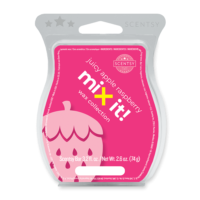JUICY APPLE RASPBERRY SCENTSY BAR