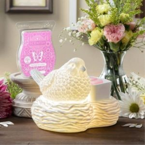 MARCH 2021 SCENTSY WAMRER OF THE MONTH BIRDS OF A FEATHER