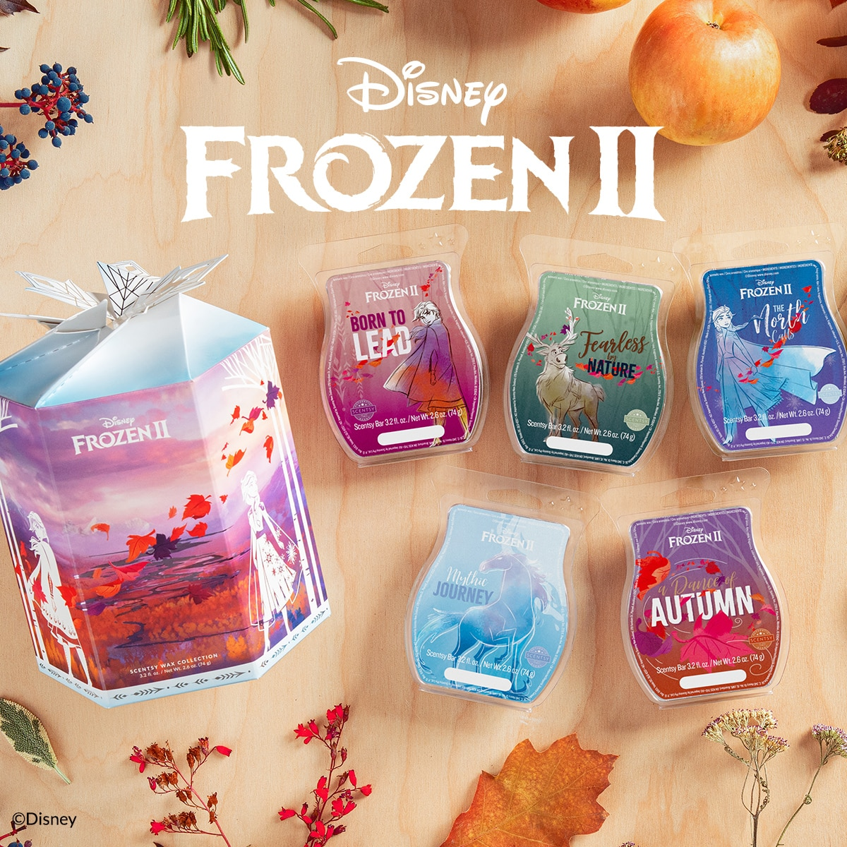 Frozen 2 Wax Collection