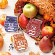 SCENTSY HARVEST DELIGHTS WAX COLLECTION