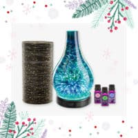 SCENTSY DIFFUSER BUNDLE SPECIAL - GET A FREE SHADE AND OILS