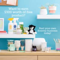 SHOOTING STAR KIT MARCH 2020 FREE | SCENTSY APRIL 2020 WARMER & SCENT OF THE MONTH - BE BOLD PEACOCK WARMER & BE FABULOUS