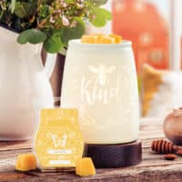 Scent and Warmer of the Month - May 2020