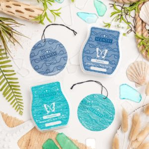 DRIFTWOOD BAY & ENDLESS SEA SCENTSY FRAGRANCE