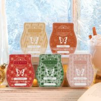 SCENTSY COZY COLLECTION 2019 HOLIDAY