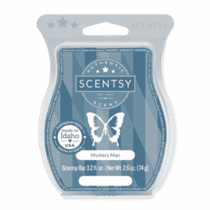 MYSTERY MAN SCENTSY BAR | Mystery Man Scentsy Bar
