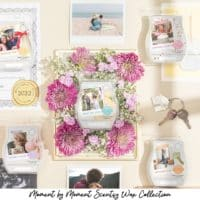 Moment by Moment Scentsy Wax Collection   Celebrate Best Friends with Scentsy's Koala Buddy Clips   Shop Now