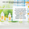 NEW SCENTSY DISH SOAP 2019 INCANDESCENT.SCENTSY.US | NEW! ALOE WATER & CUCUMBER SCENTSY DISH SOAP | NEW AND IMPROVED | Shop Scentsy | Incandescent.Scentsy.us