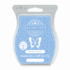 NEWBORN NURSERY SCENTSY BAR | Shop Scentsy | Incandescent.Scentsy.us