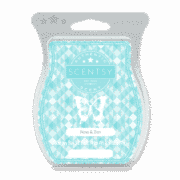 NOW AND ZEN SCENTSY BAR