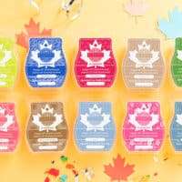 CANADA 10 YEAR ANNIVERSARY SPECIAL BAR BUNDLE