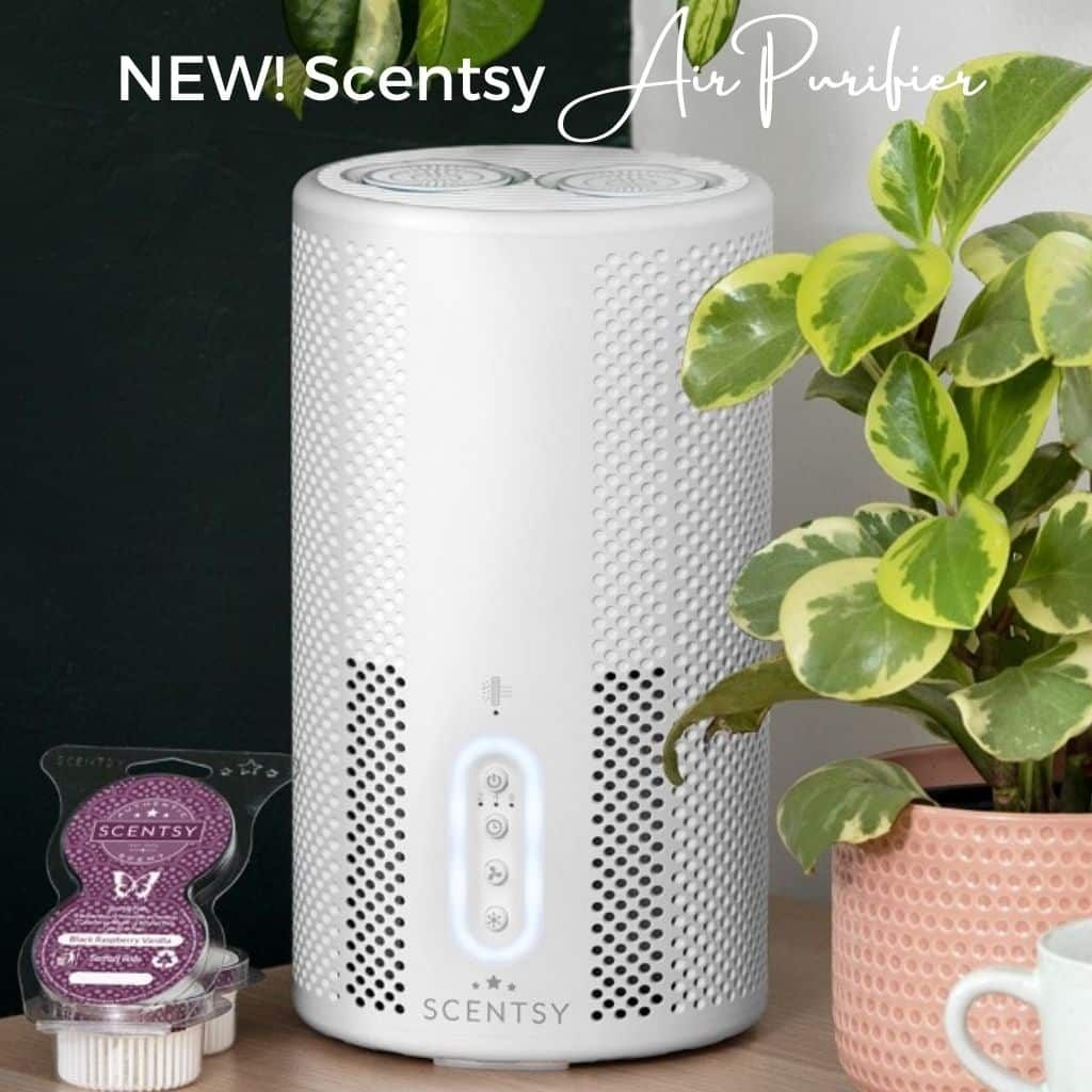 Introducing the New! Scentsy Air Purifier with Fragrance | Shop 8/1