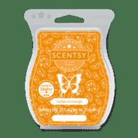 Oodles of Orange Scentsy Bar