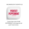 PERFECT PEPPERMINT SCENTSY FRAGRANCE   Perfect Peppermint Scentsy Bar