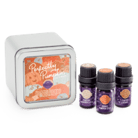 PERFECTLY PUMPKIN SCENTSY OIL PACK