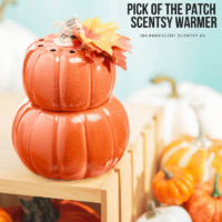 PICK OF THE PATCH SCENTSY WARMER
