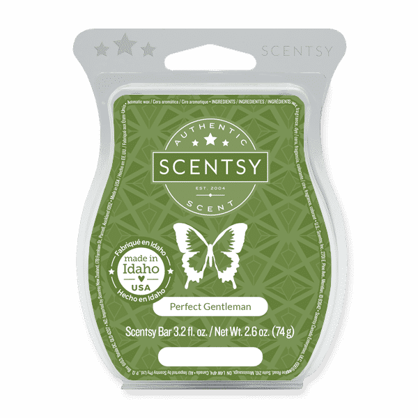 Perfect Gentleman Scentsy Bar   NEW! Perfect Gentleman Scentsy Bar   Father's Day 2021   Incandescent.Scentsy.us