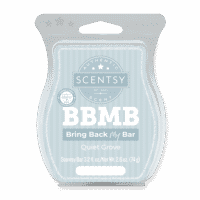 QUIET GROVE SCENTSY BAR