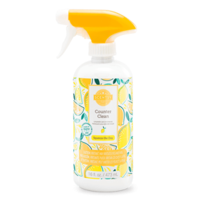 SQUEEZE THE DAY SCENTSY COUNTER CLEAN