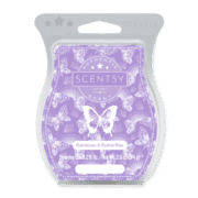 RAINBOWS & BUTTERFLIES SCENTSY BAR