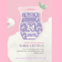 RAINBOWS & BUTTERFLIES SCENTSY SCENT CIRCLE