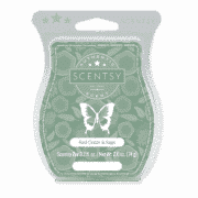 RED CEDAR AND SAGE SCENTSY BAR