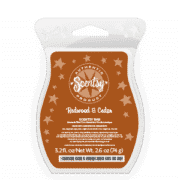 REDWOOD & CEDAR SCENTSY BAR