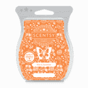 RISE AND SUNSHINE SCENTSY BAR