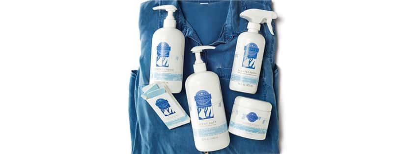 SCENTSY LAUNDRY PRODUCTS