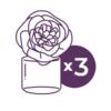 SCENTSY 3 FRAGRANCE FLOWERS   SCENTSY FRAGRANCE FLOWER - 3 PACK BUNDLE & SAVE