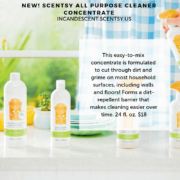 ALL PURPOSE CONCENTRATED SCENTSY CLEANER
