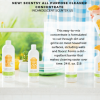 ALOE WATER & CUCUMBER SCENTSY ALL PURPOSE CLEANER CONCENTRATE