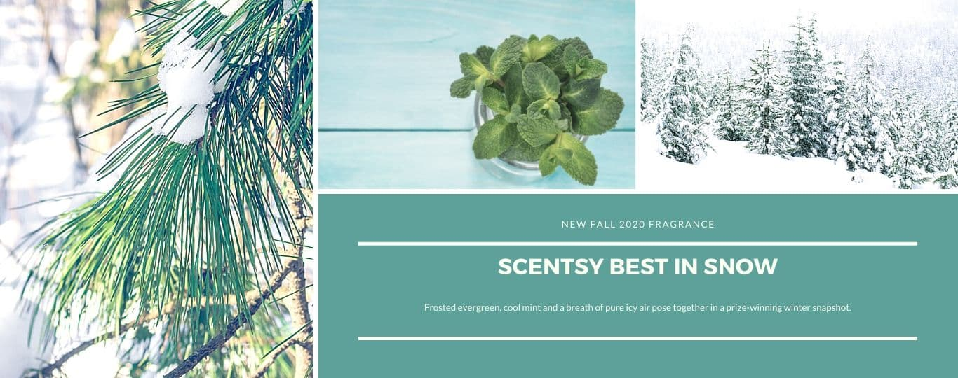 SCENTSY BEST IN SNOW FRAGRANCE